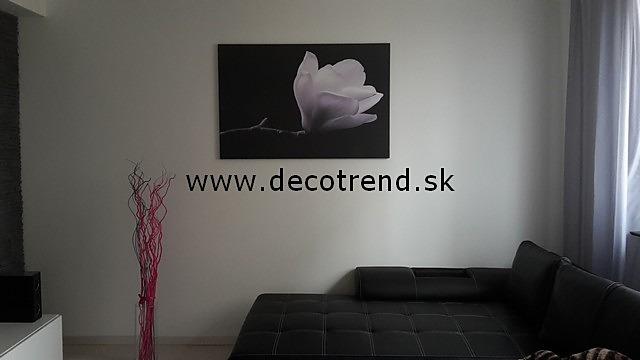 Obrazy na stenu, ktoré si vybrali naši zákazníci - Obrázok č. 17