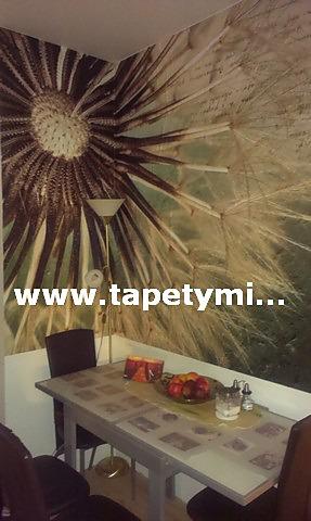 Inšpirácie s tapetami - realizácie v interiéroch - Obrázok č. 34