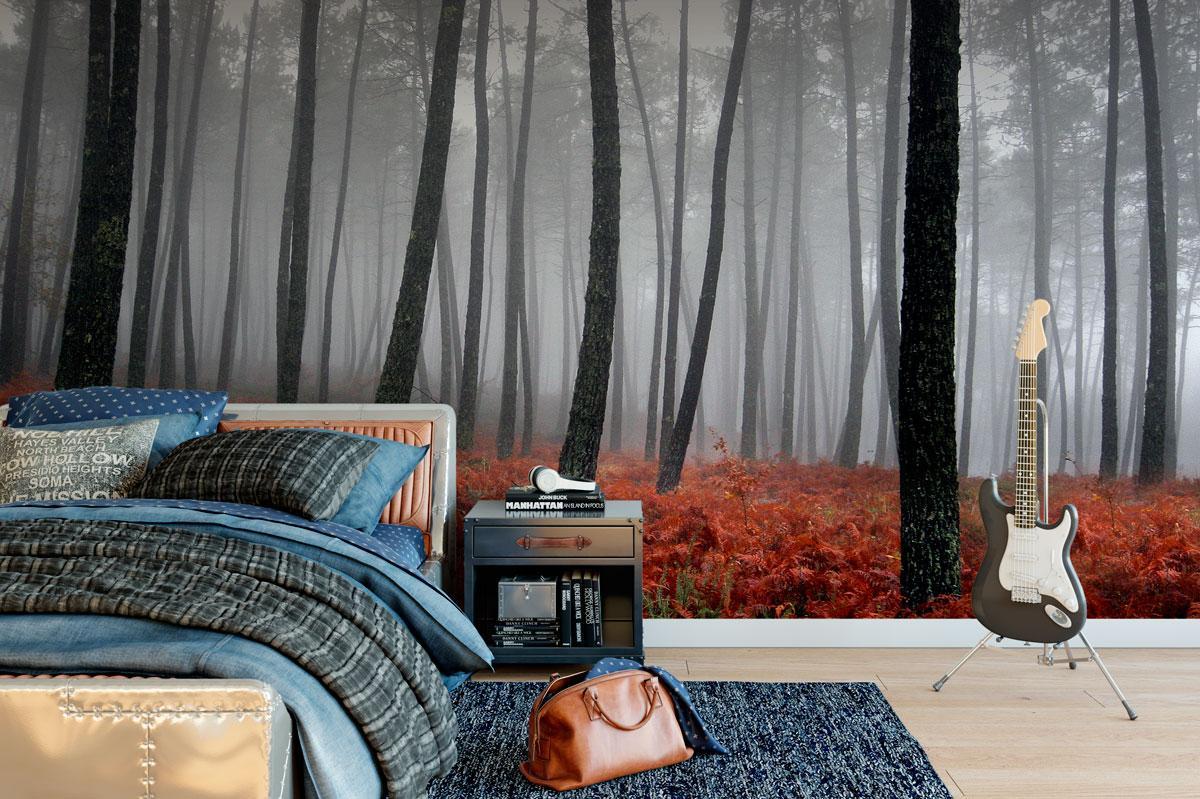 Stromy na tapetách - Obrázok č. 8