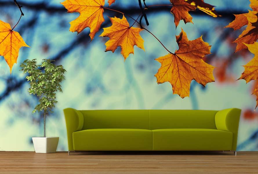 Stromy na tapetách - Obrázok č. 12