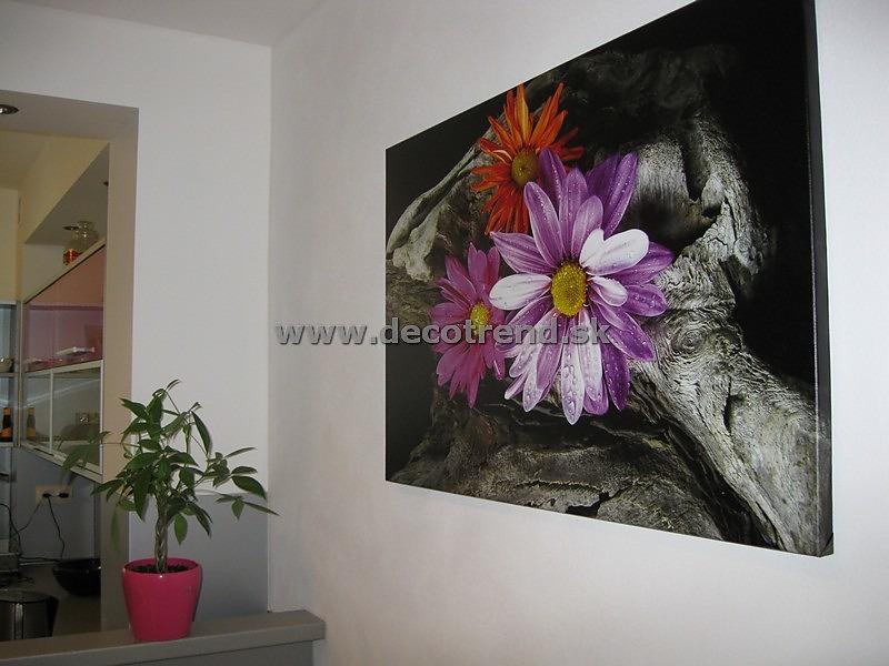 Obrazy na stenu, ktoré si vybrali naši zákazníci - Obrázok č. 40