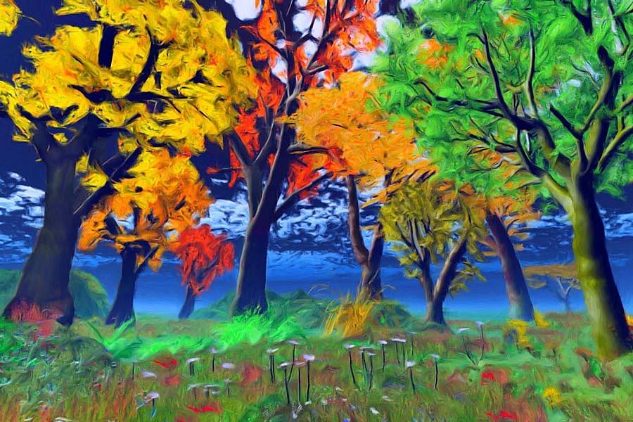Stromy na tapetách - Obrázok č. 21