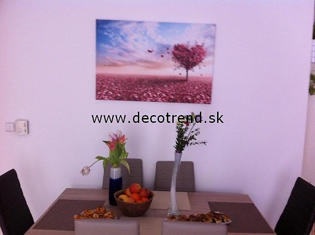 Obrazy na stenu, ktoré si vybrali naši zákazníci - Obrázok č. 60