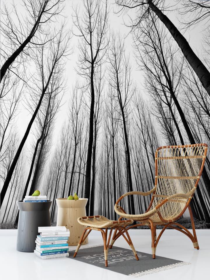 Stromy na tapetách - Obrázok č. 24