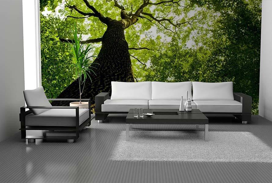 Stromy na tapetách - Obrázok č. 25