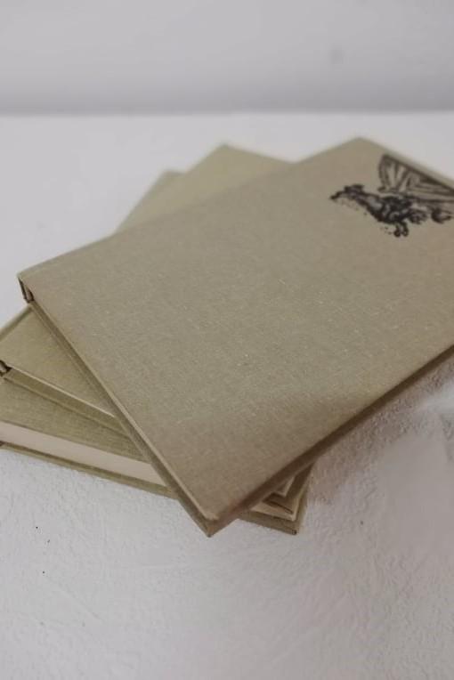 Redizajnujeme, maľujeme, tvoríme - PRED - staré knihy