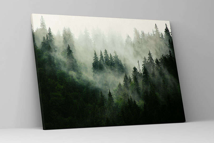 Stromy na obrazoch - Obrázok č. 43
