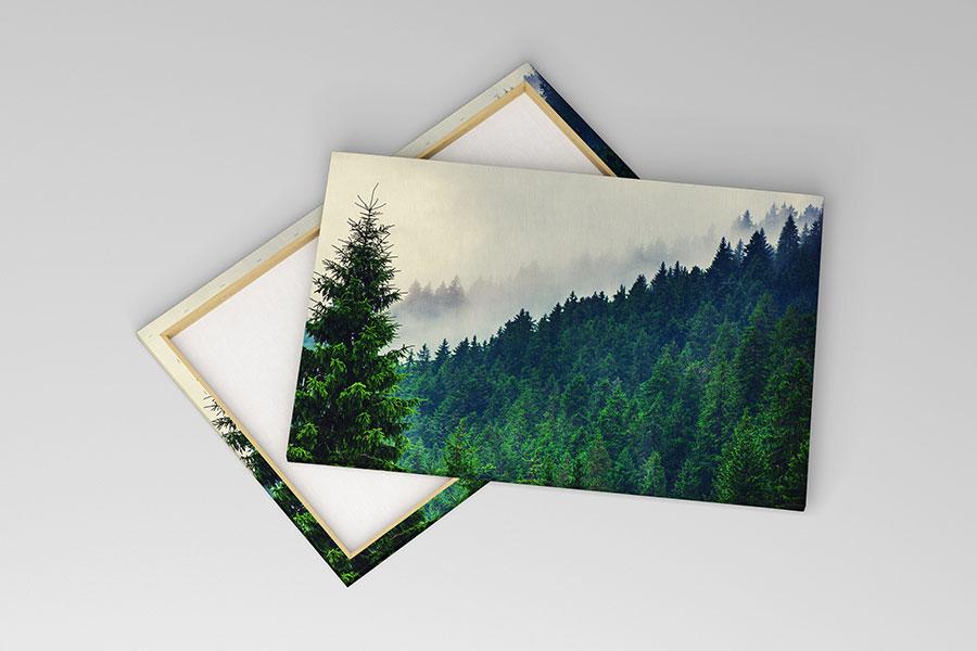 Stromy na obrazoch - Obrázok č. 44