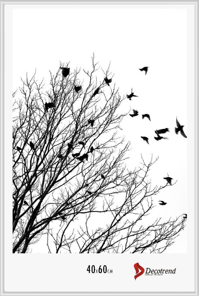 Klip rámy, Hliníkové rámy na fotky, plagáty, obrázky - Obrázok č. 60