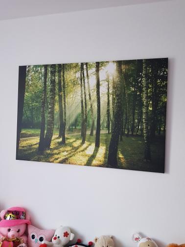 Obrazy na stenu, ktoré si vybrali naši zákazníci - Obrázok č. 73