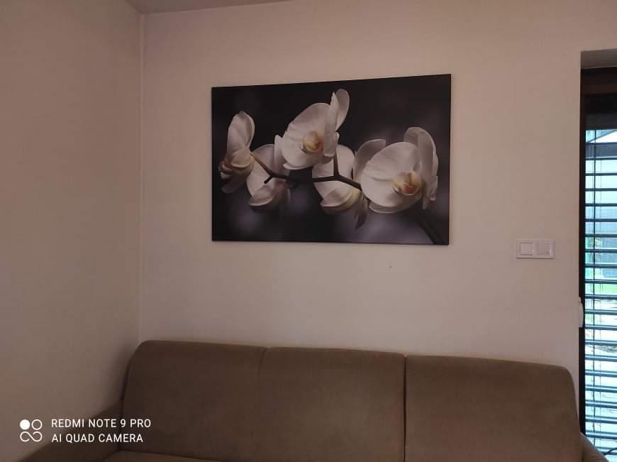 Obrazy na stenu, ktoré si vybrali naši zákazníci - Obrázok č. 74
