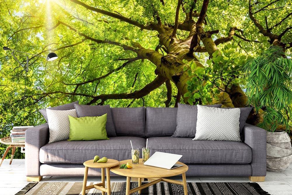 Stromy na tapetách - Obrázok č. 76