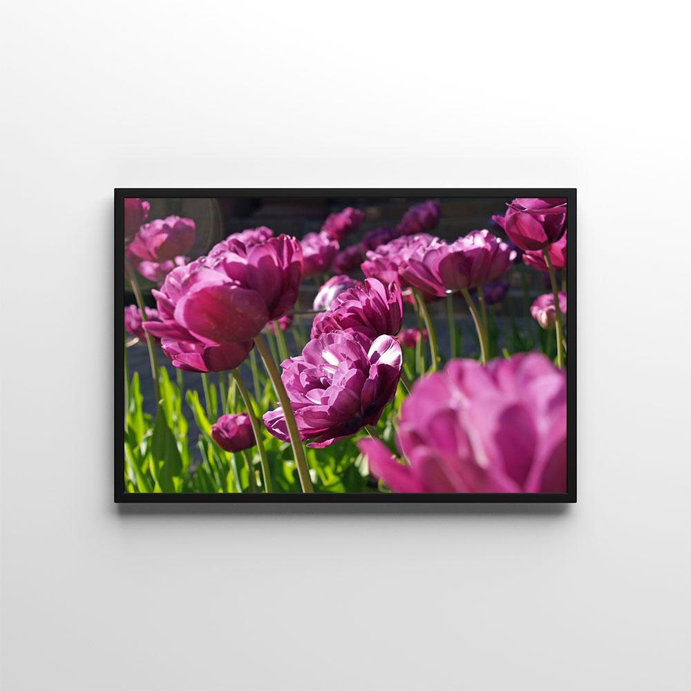 Plagáty s kvetmi 🌸🌼🌺 - Obrázok č. 43