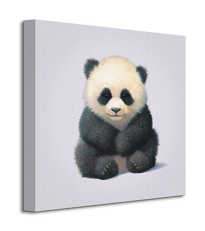 Obraz na plátne Panda 40x40cm - Obrázok č. 1