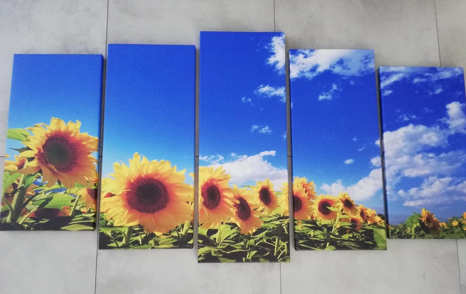 5 dielny Obraz Slnečnice 150x80cm - Obrázok č. 1