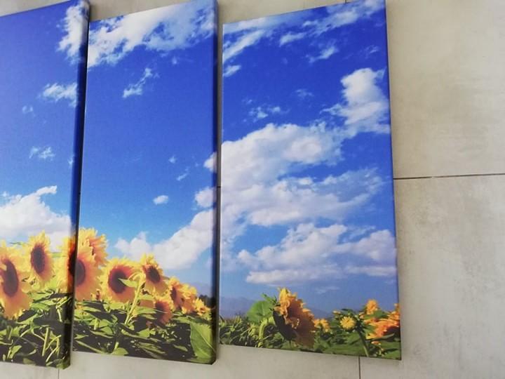5 dielny Obraz Slnečnice 150x80cm - Obrázok č. 2