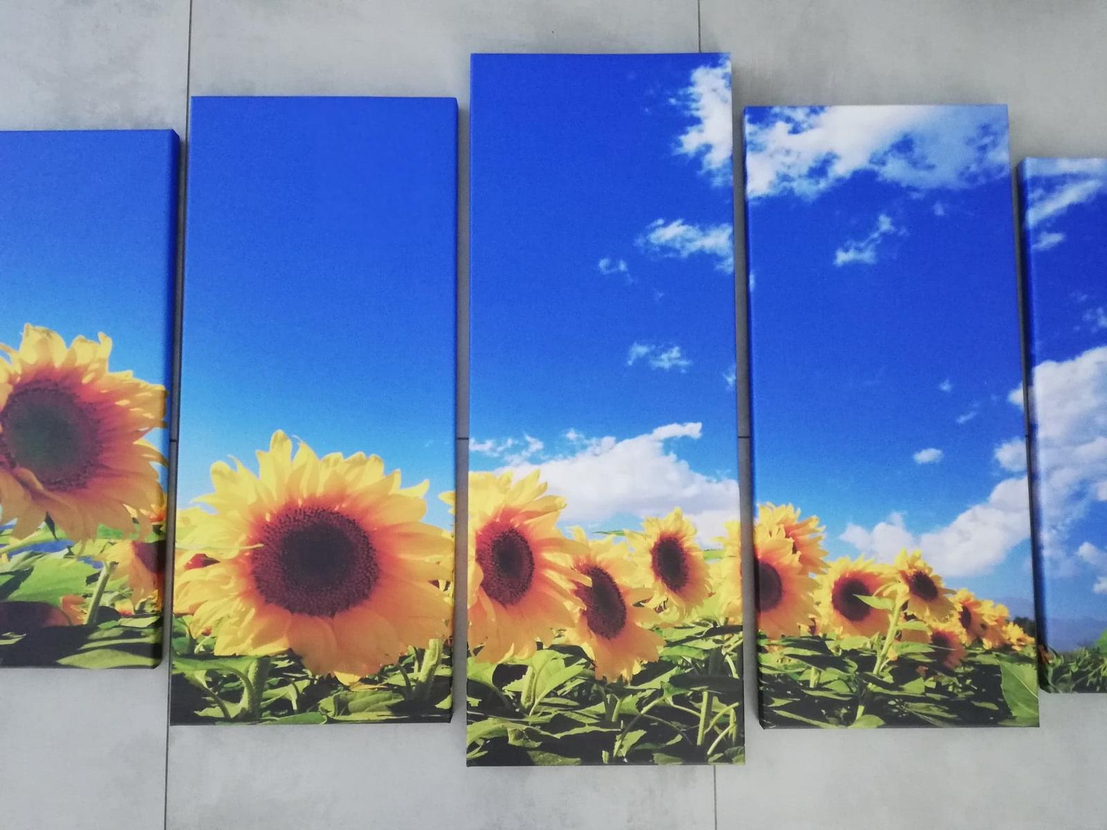 5 dielny Obraz Slnečnice 150x80cm - Obrázok č. 3
