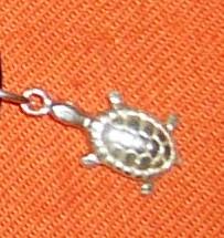 Asi bude svatba:) - Zásnubní želvička na krk pro Martínka:)