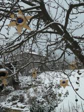 skorošvagrová ozdobila jabloň :-)