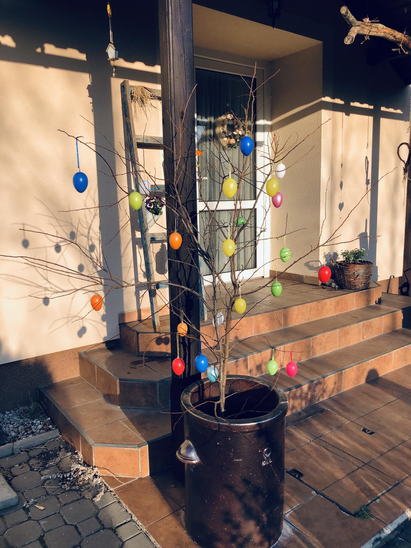 U nás doma a na zahradě 2020 - Obrázek č. 31