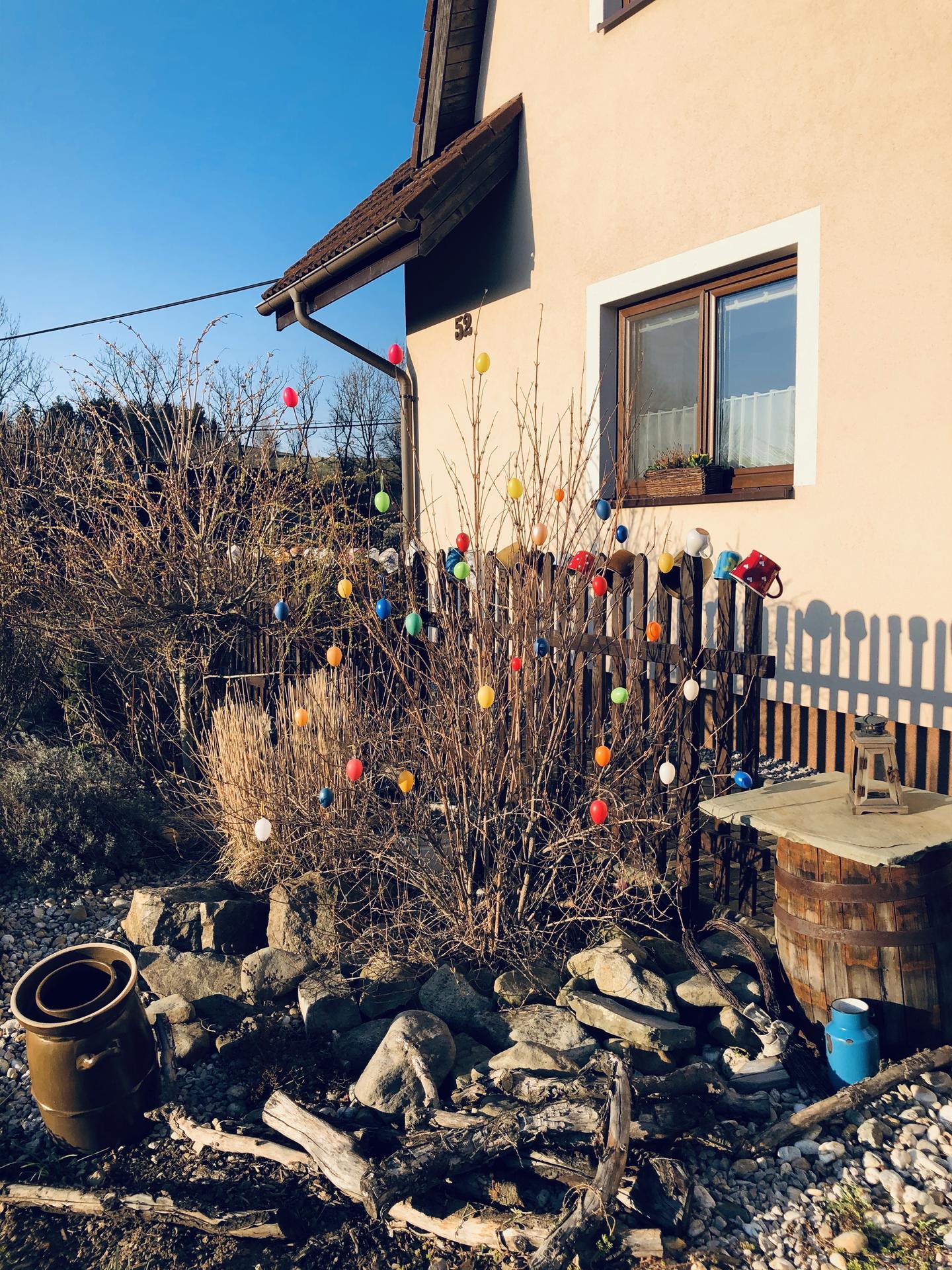 U nás doma a na zahradě 2020 - Obrázek č. 32