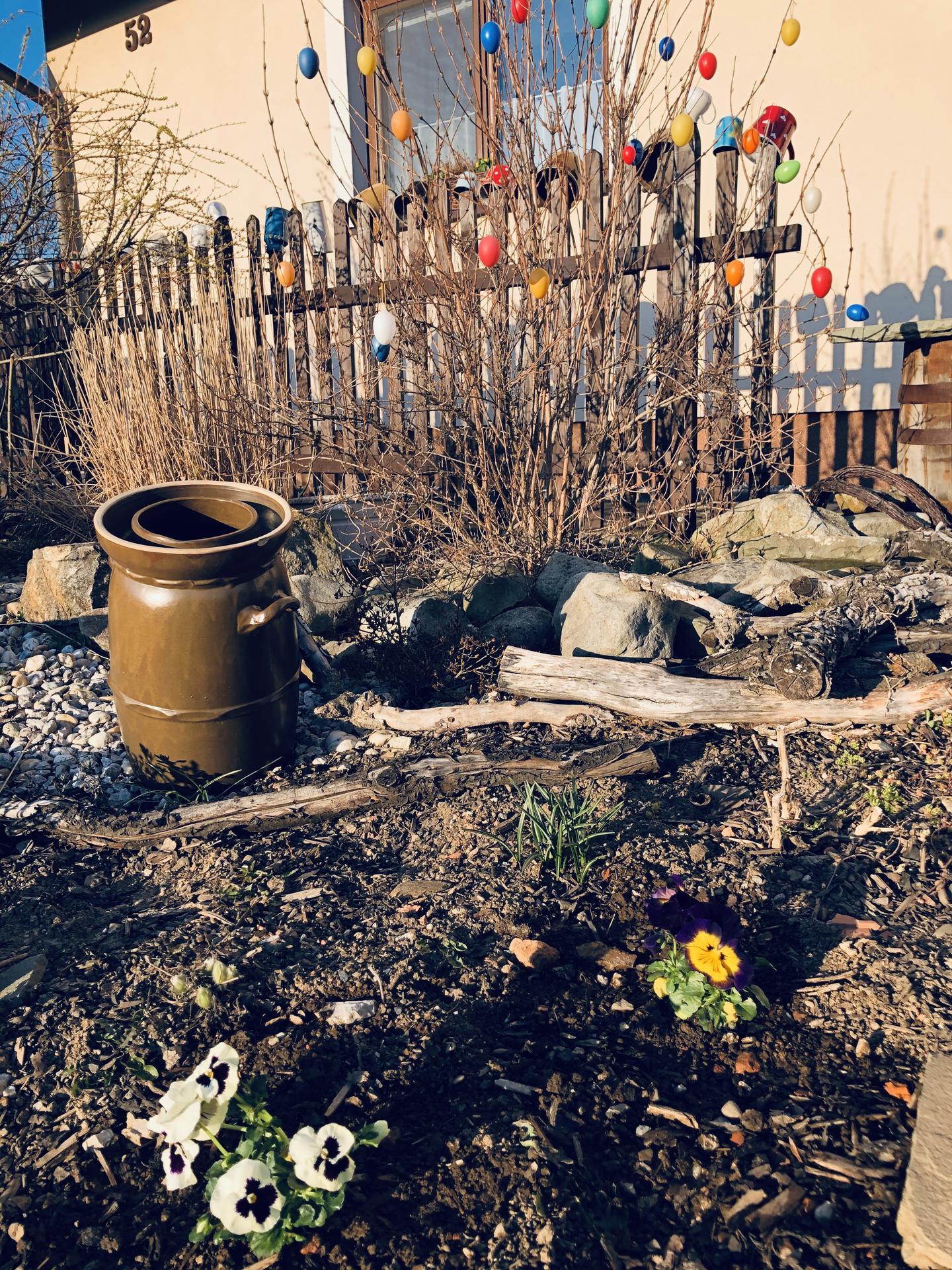 U nás doma a na zahradě 2020 - Obrázek č. 34