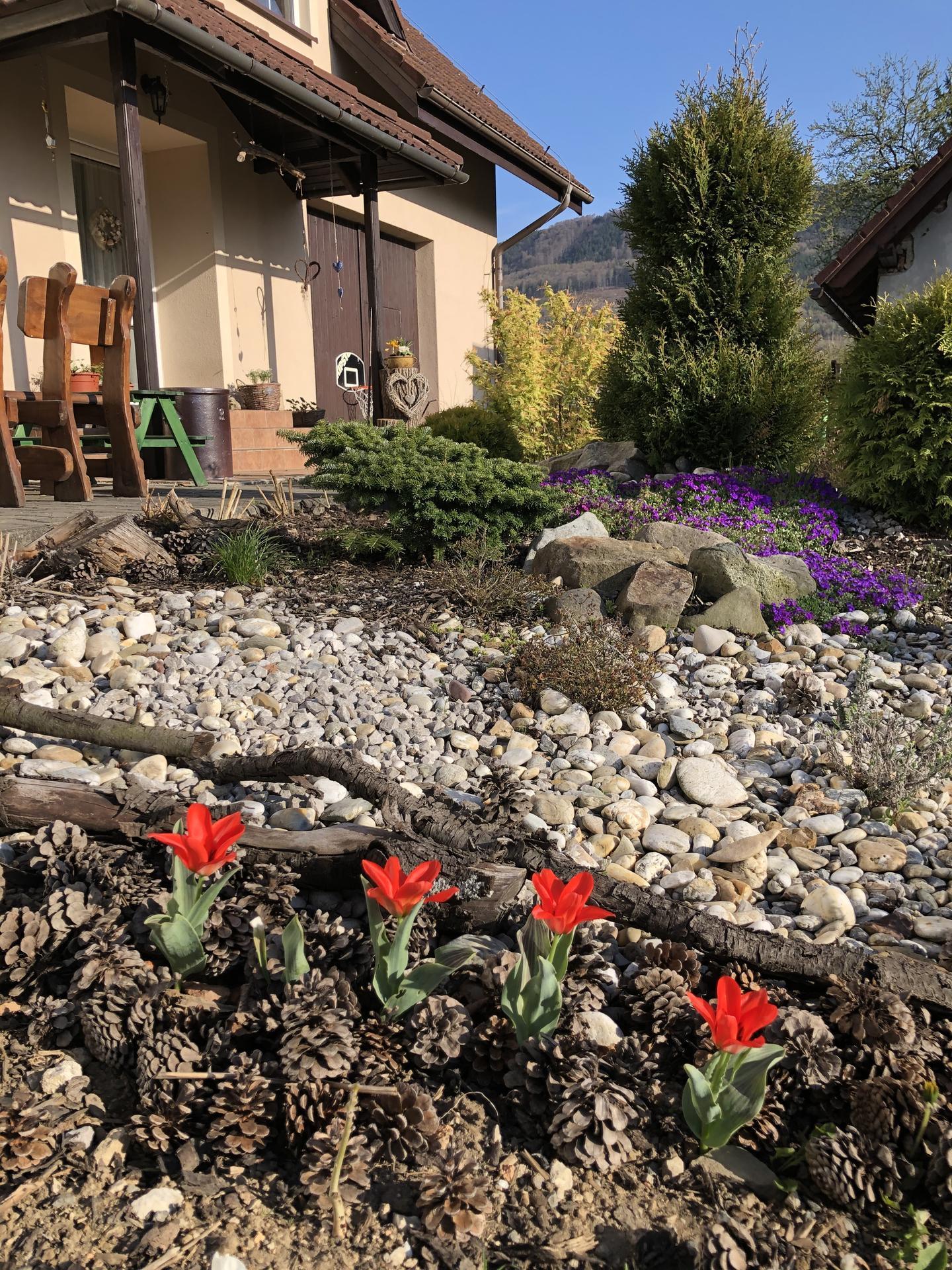 U nás doma a na zahradě 2020 - Obrázek č. 49
