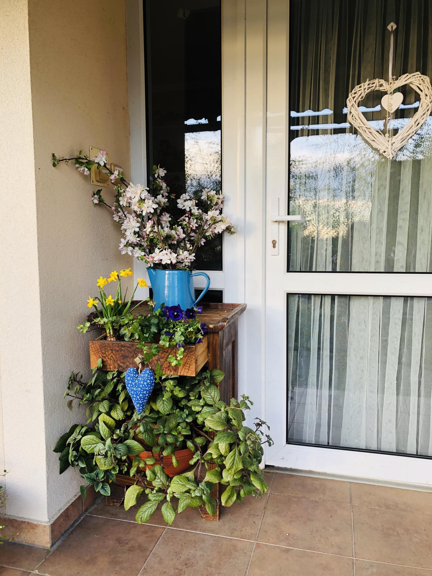 U nás doma a na zahradě 2020 - Obrázek č. 54