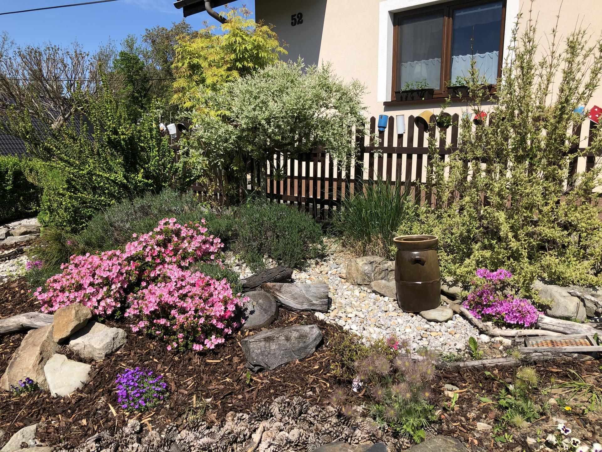 U nás doma a na zahradě 2020 - Obrázek č. 59