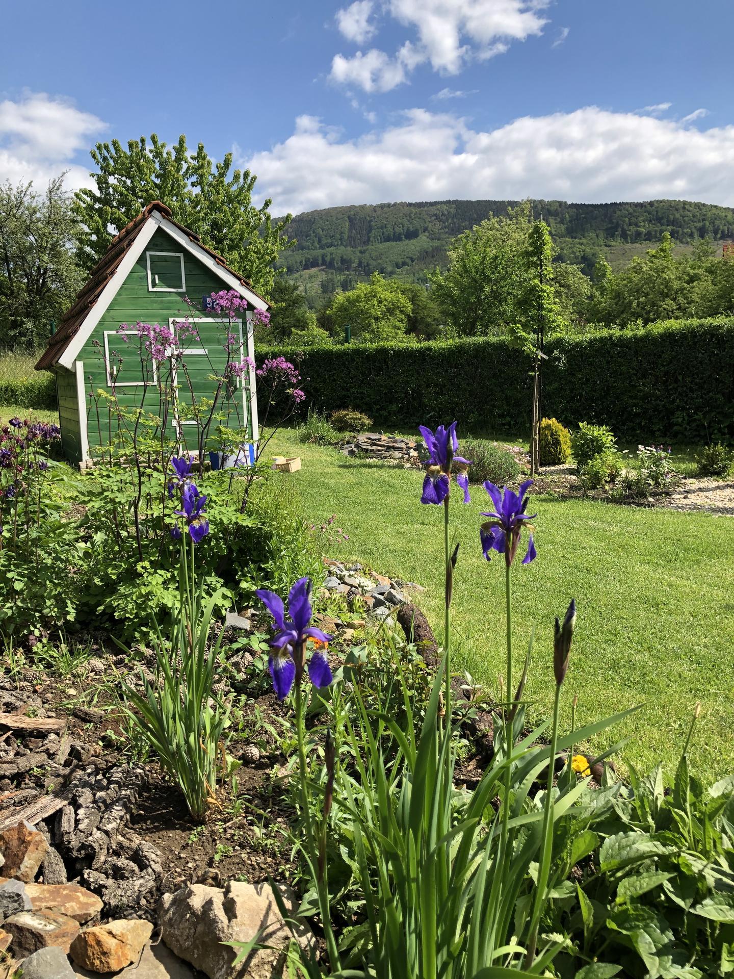 U nás doma a na zahradě 2020 - Obrázek č. 65