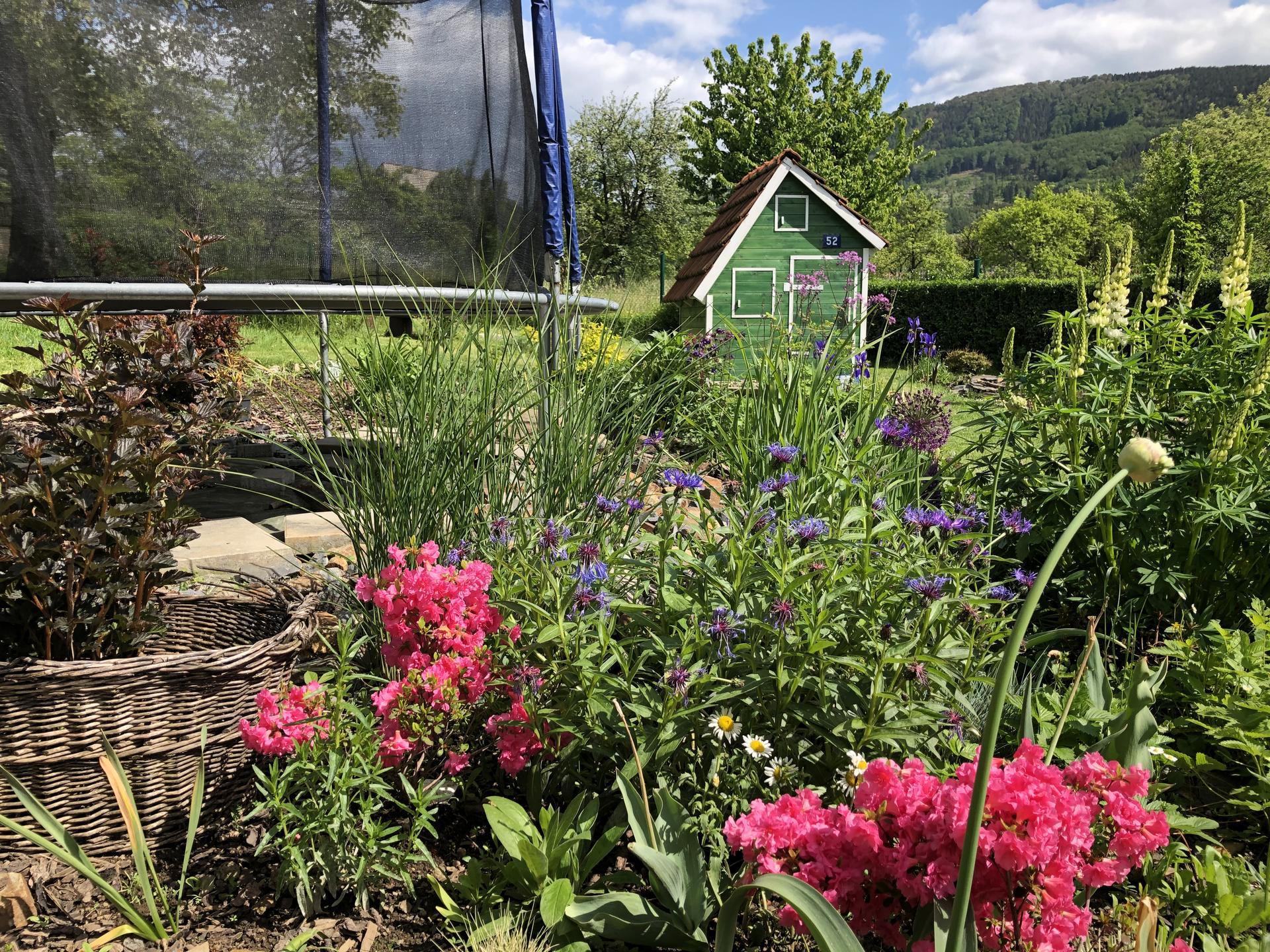 U nás doma a na zahradě 2020 - Obrázek č. 68