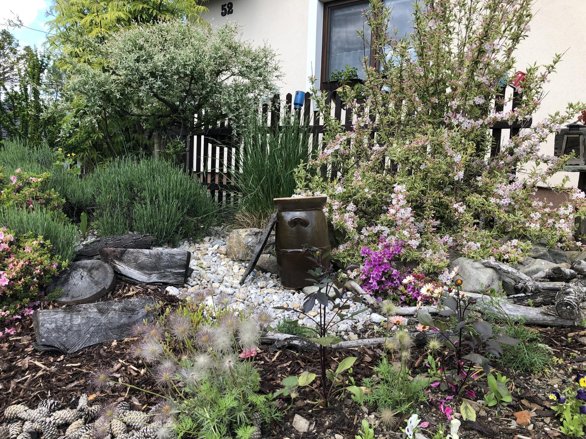 U nás doma a na zahradě 2020 - Obrázek č. 70