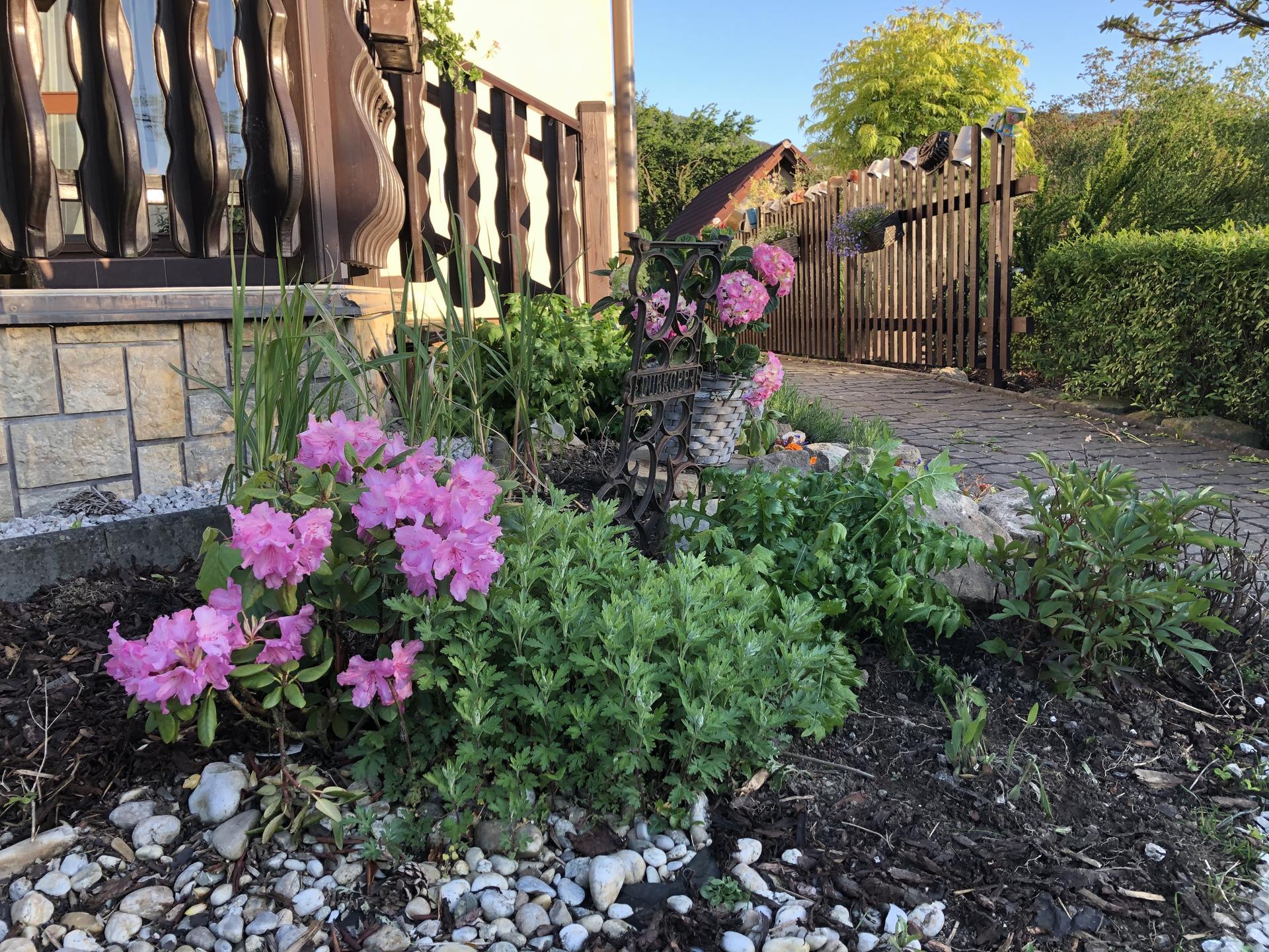 U nás doma a na zahradě 2020 - Obrázek č. 74