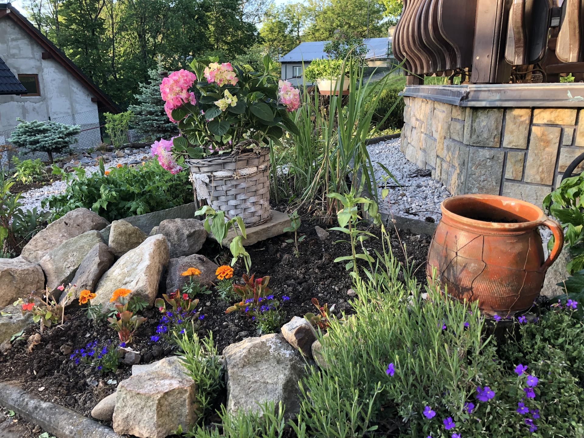 U nás doma a na zahradě 2020 - Obrázek č. 73