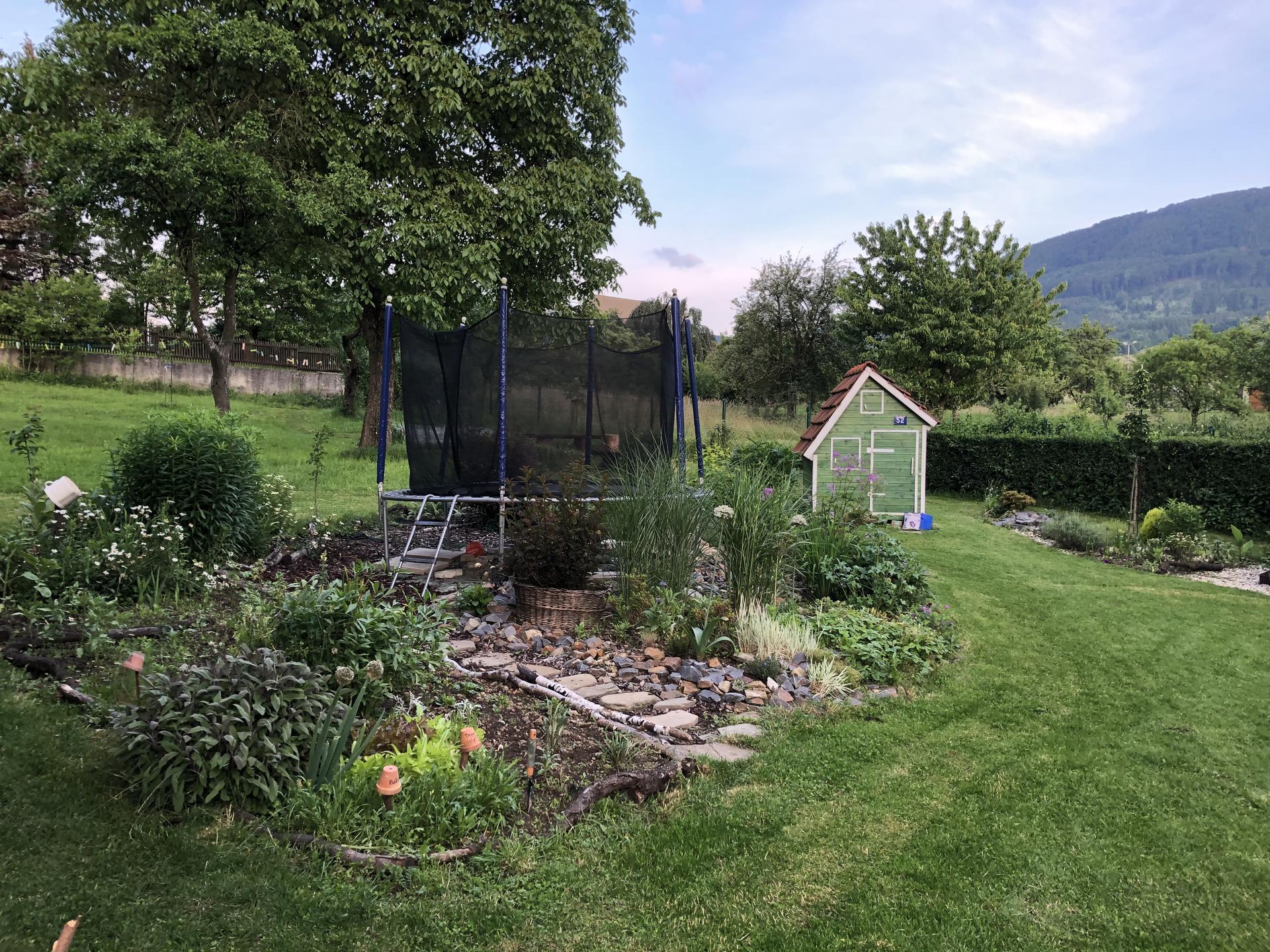 U nás doma a na zahradě 2020 - Obrázek č. 97