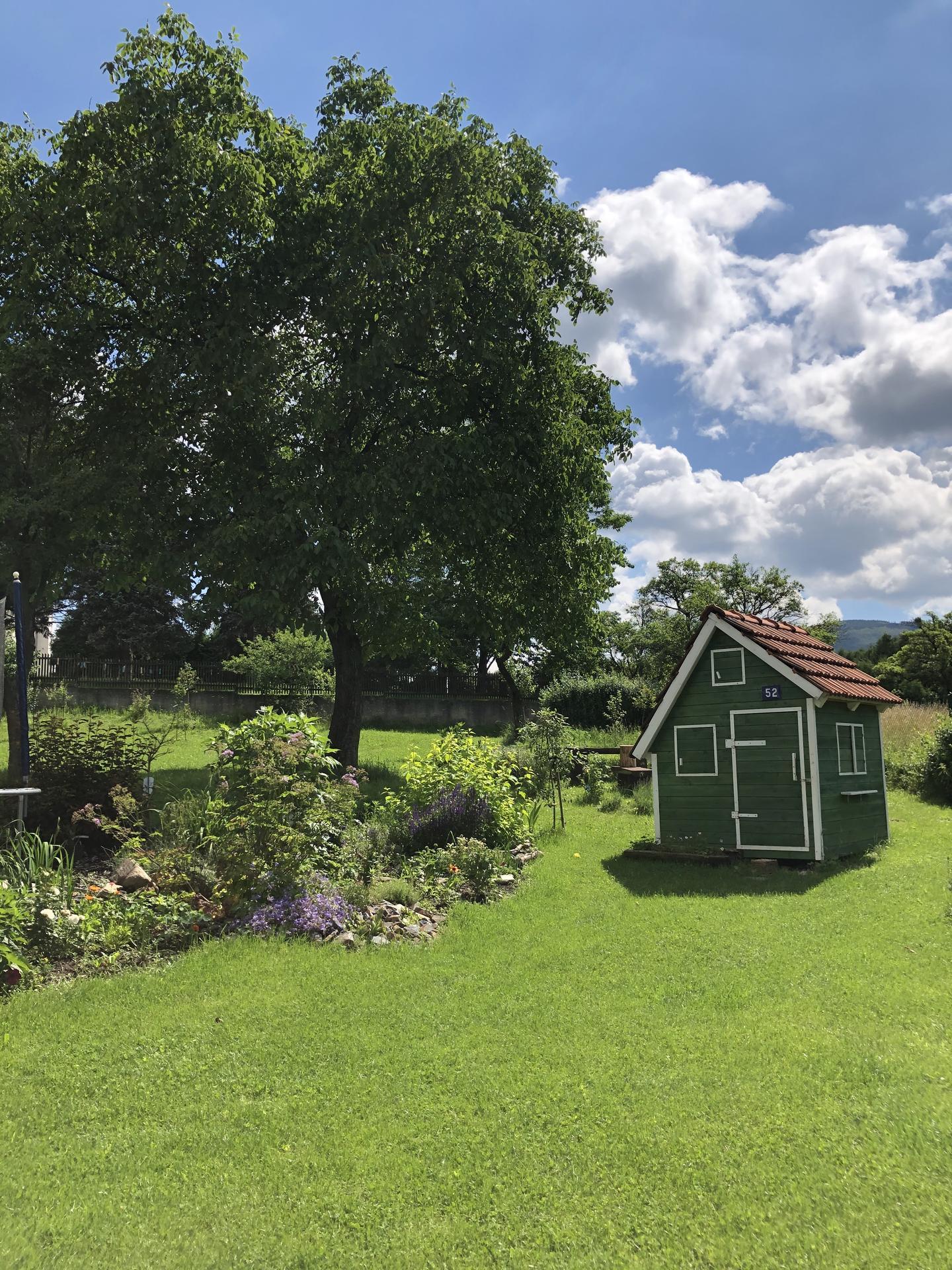 U nás doma a na zahradě 2020 - Obrázek č. 98