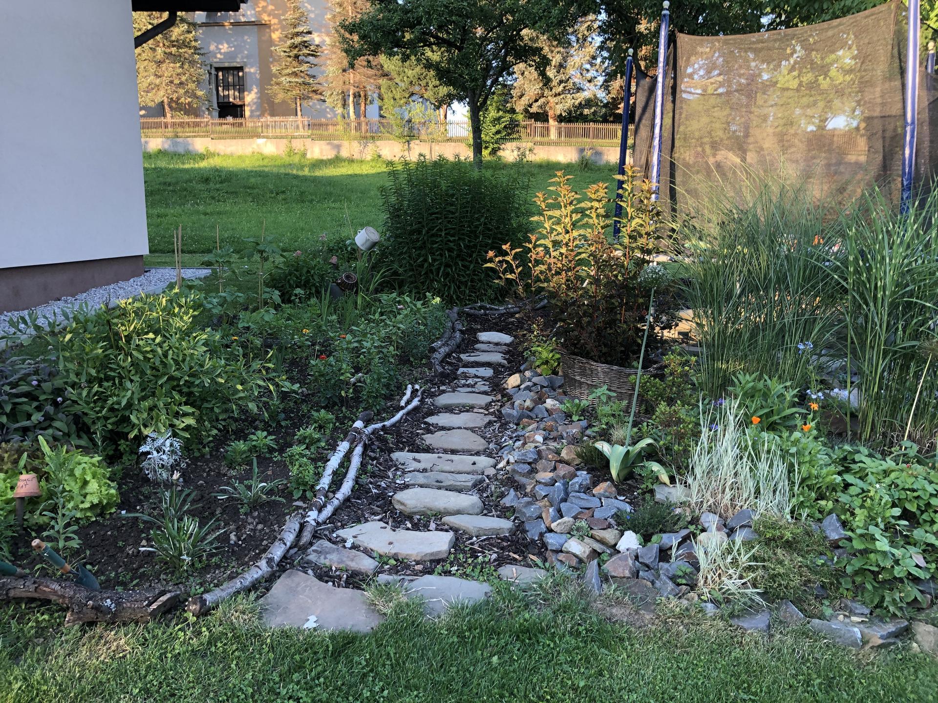 U nás doma a na zahradě 2020 - Obrázek č. 102
