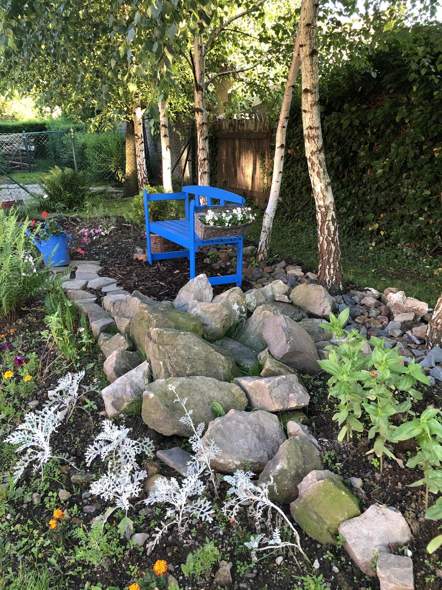 U nás doma a na zahradě 2020 - Obrázek č. 108