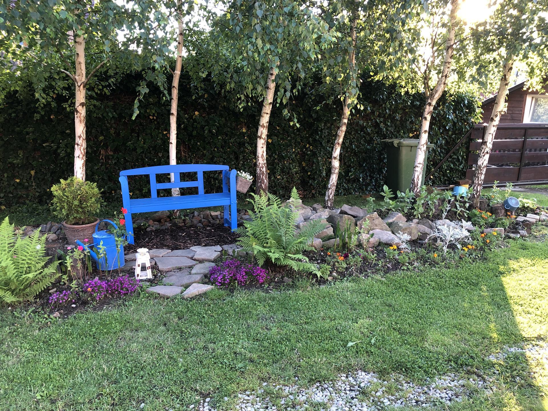 U nás doma a na zahradě 2020 - Obrázek č. 107