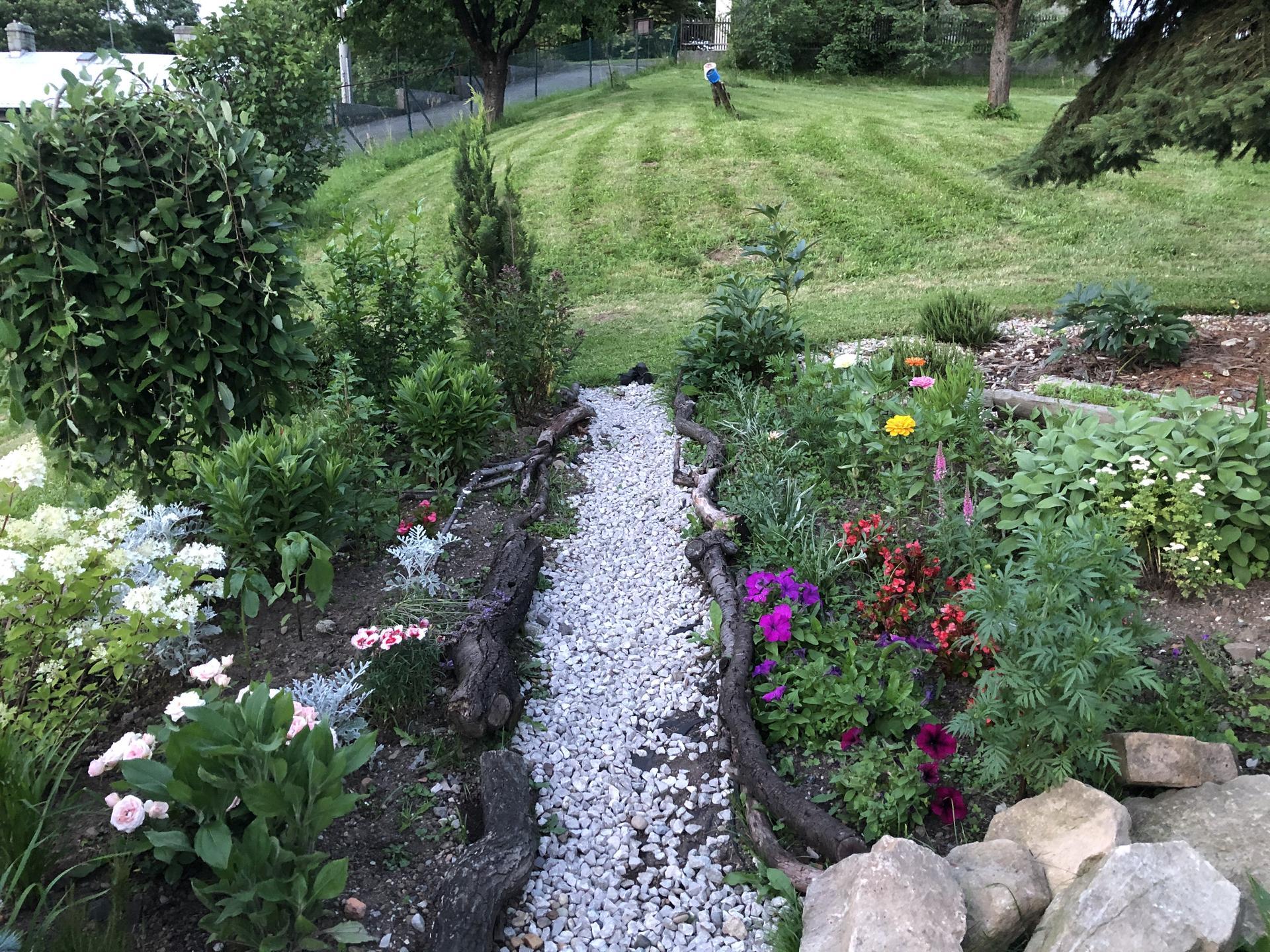 U nás doma a na zahradě 2020 - Obrázek č. 119
