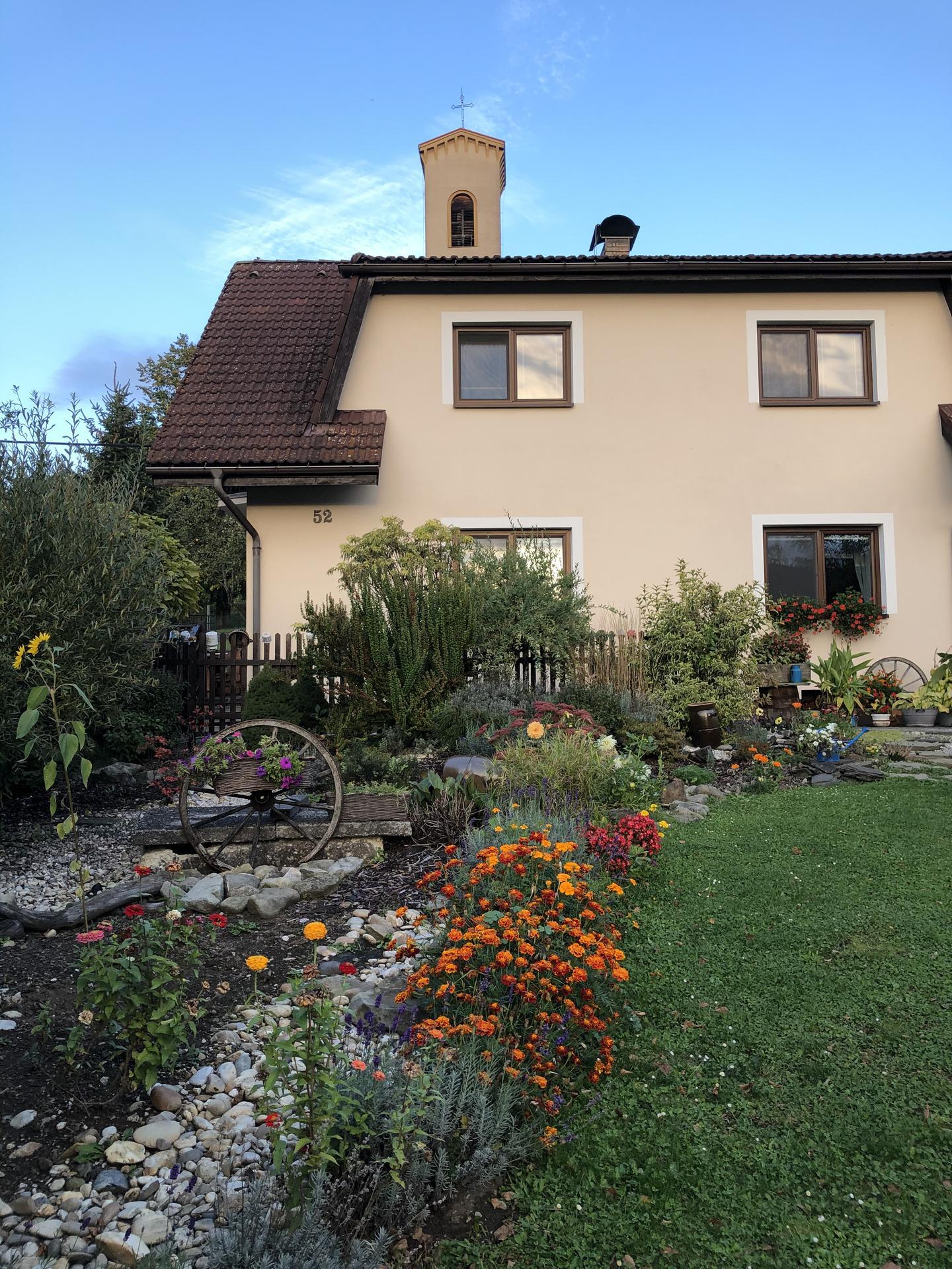 U nás doma a na zahradě 2020 - Obrázek č. 234
