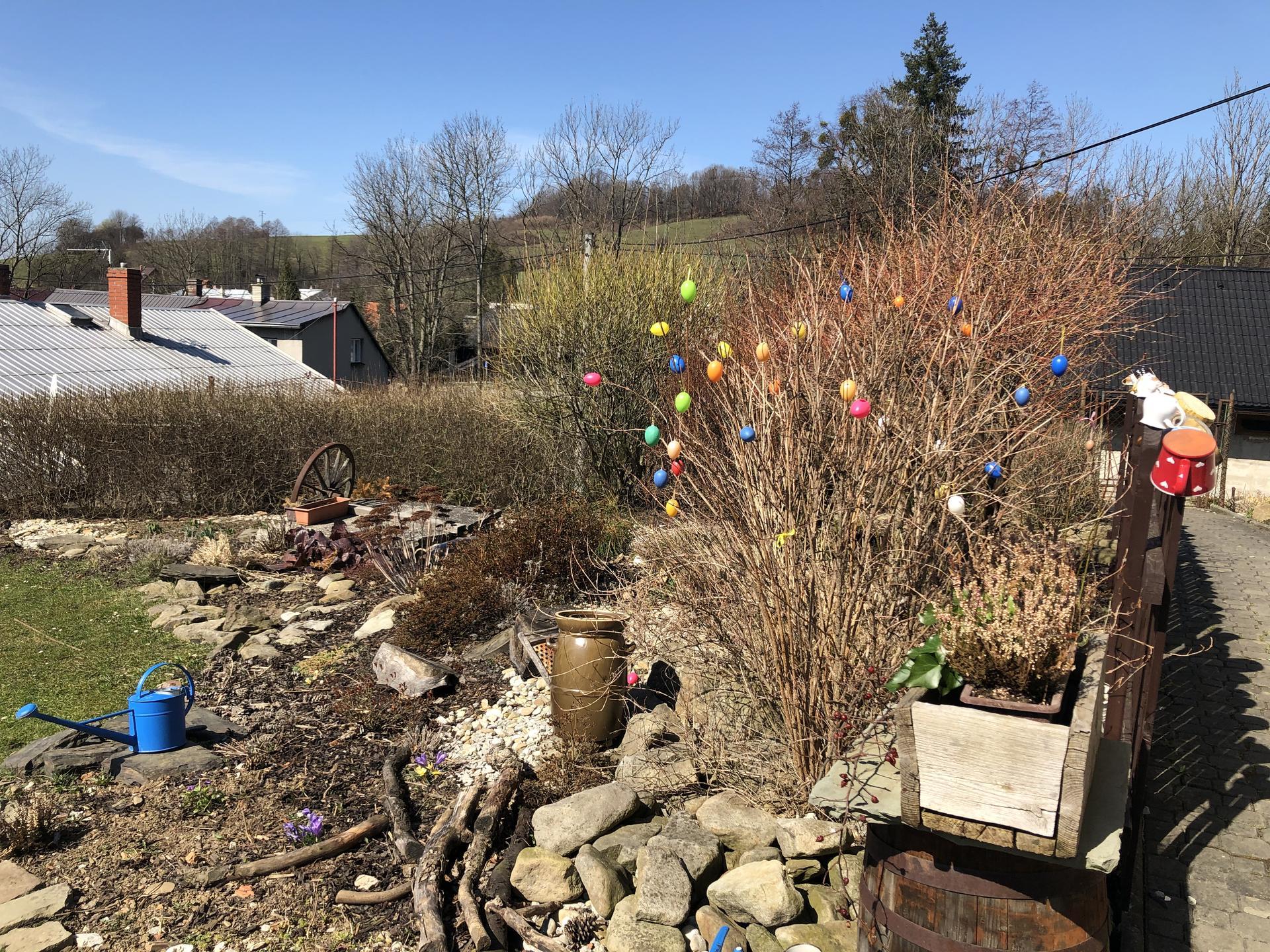 U nás doma a na zahradě 2021 - Obrázek č. 11