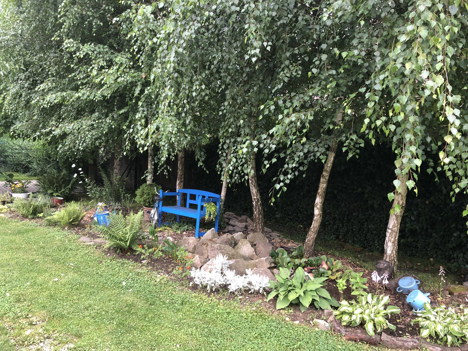 U nás doma a na zahradě 2021 - Obrázek č. 21
