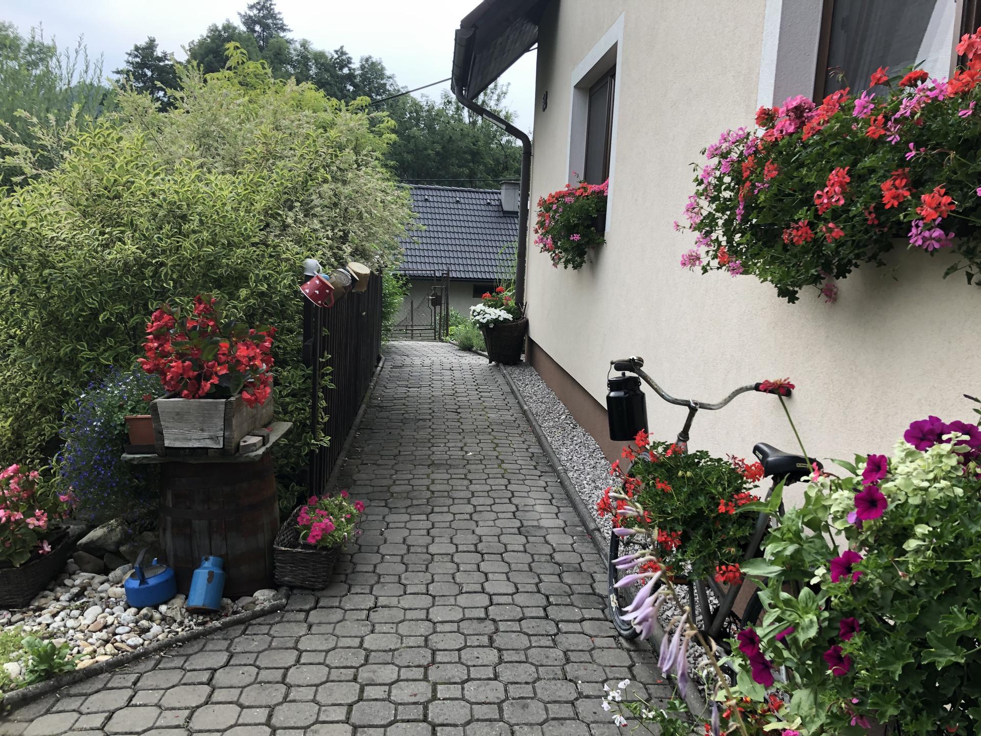 U nás doma a na zahradě 2021 - Obrázek č. 29