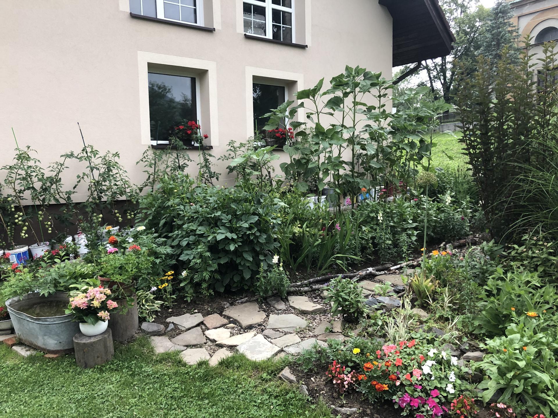 U nás doma a na zahradě 2021 - Obrázek č. 38