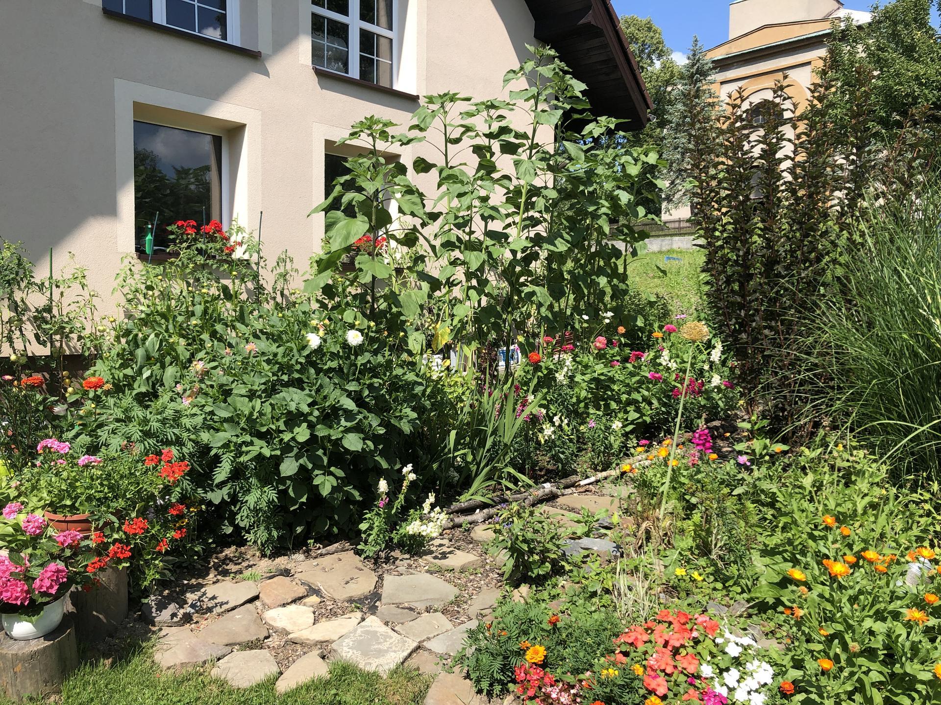 U nás doma a na zahradě 2021 - Obrázek č. 45