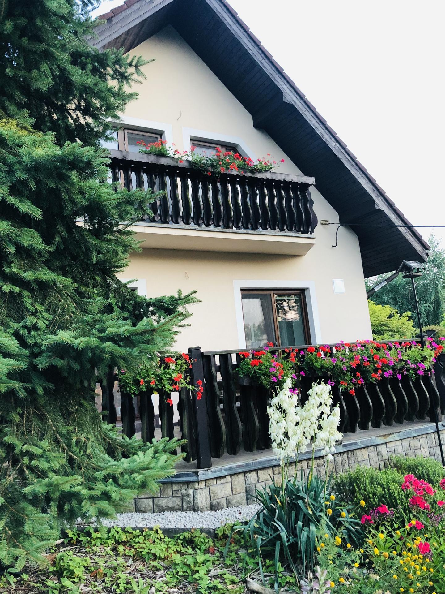 U nás doma a na zahradě 2021 - Obrázek č. 57
