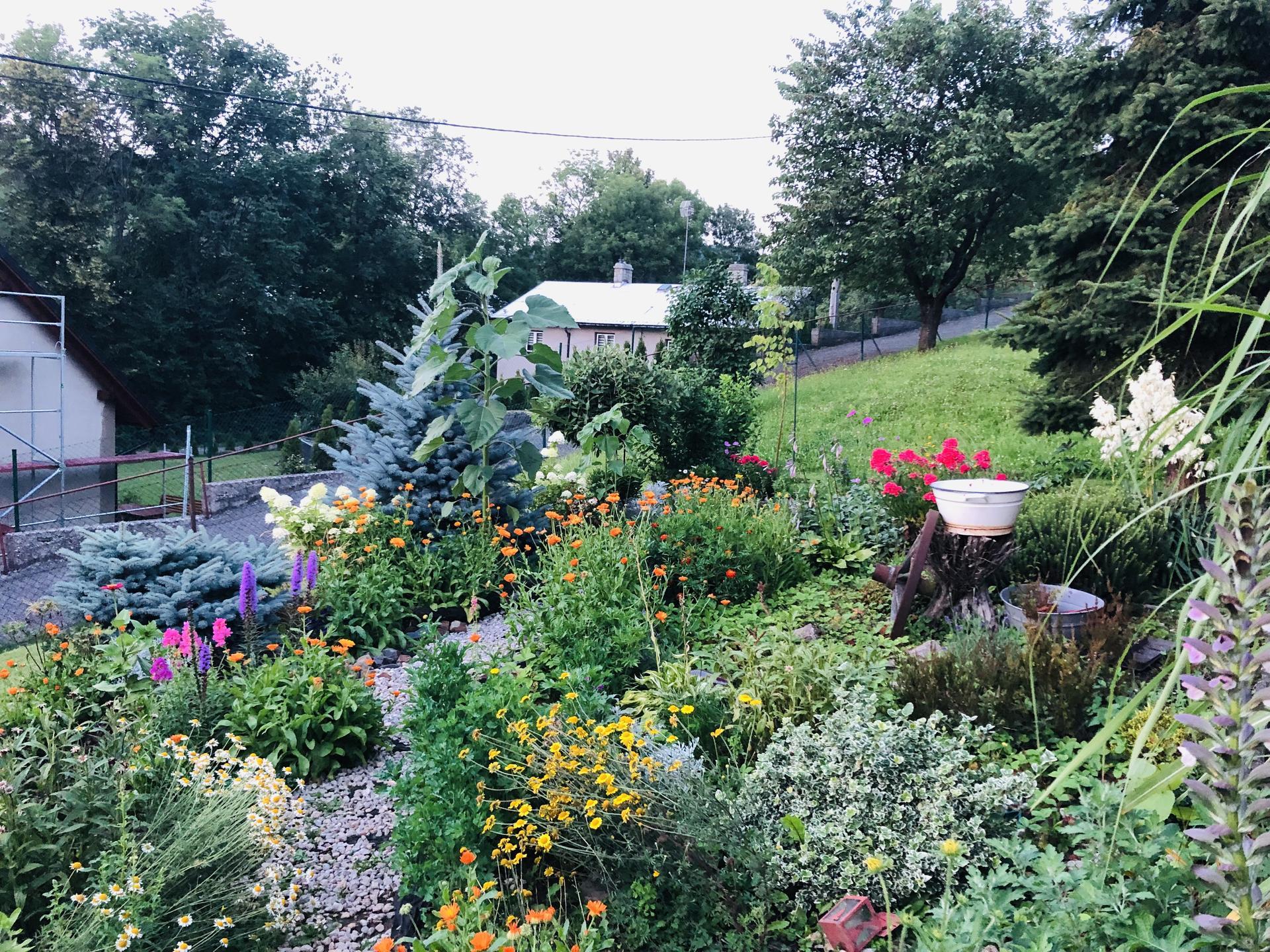 U nás doma a na zahradě 2021 - Obrázek č. 58