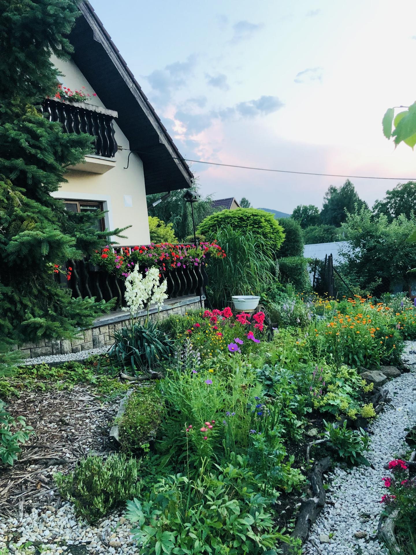 U nás doma a na zahradě 2021 - Obrázek č. 59