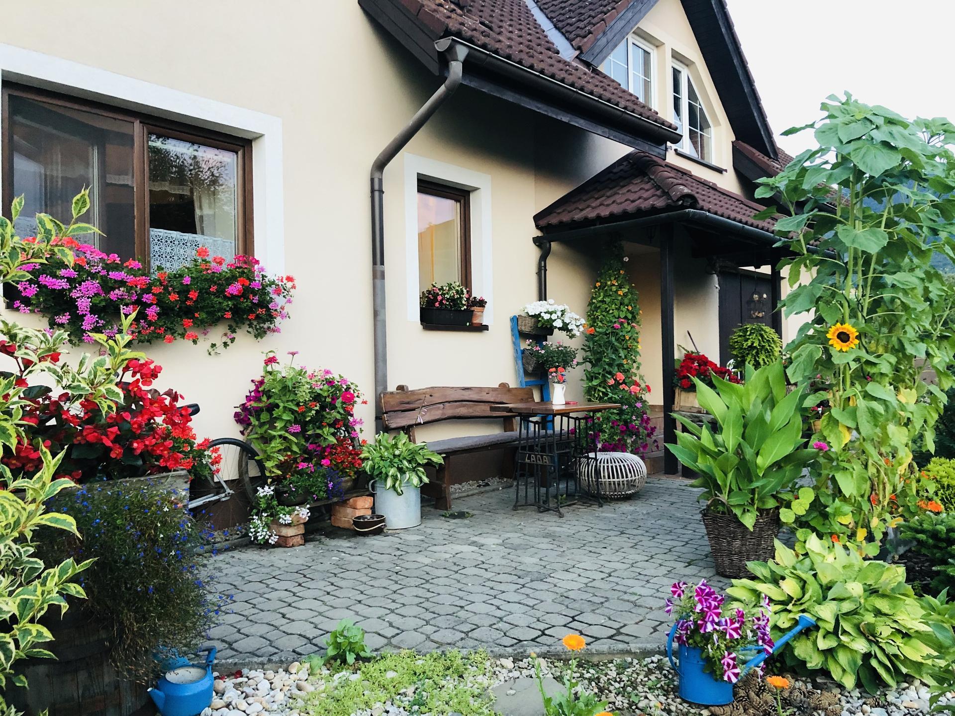 U nás doma a na zahradě 2021 - Obrázek č. 63